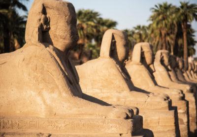 Gay Egypt