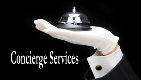 Concierge Services For Lgbt Travel Purple Light Vacations