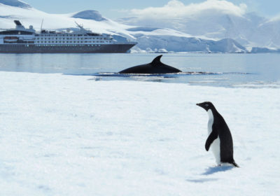 Gay Group cruise to Antarctica