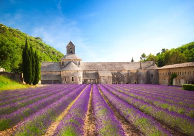 Gay Burgundy and Provence River Cruise