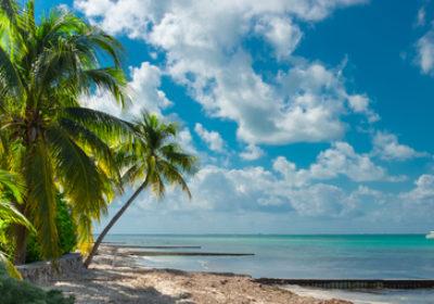 RSVP Caribbean cruise