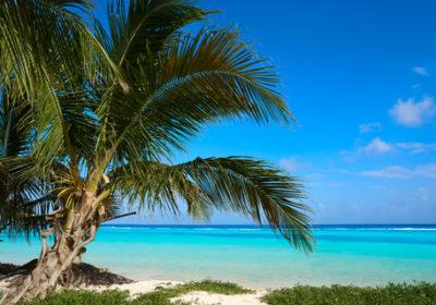 Olivia 30th Anniversary Caribbean Cruise